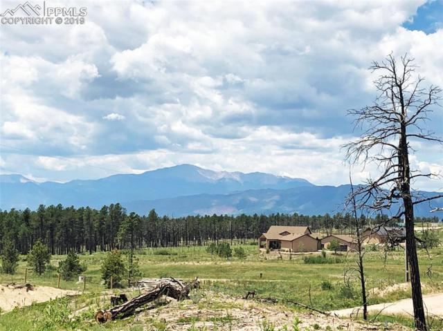 13230 Crump Road, Colorado Springs, CO 80908 (#5807584) :: 8z Real Estate