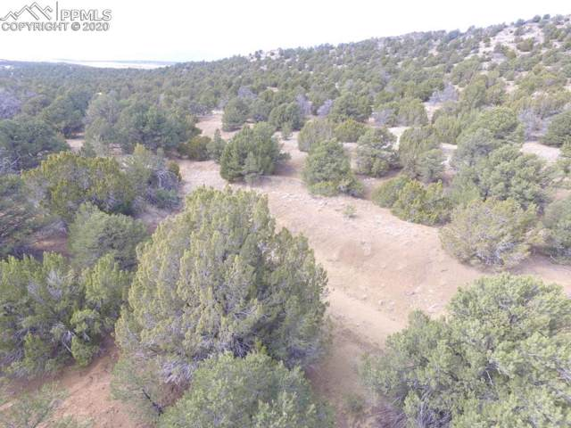 LOT 111 River Ridge Ranch, Walsenburg, CO 81089 (#5808274) :: The Kibler Group