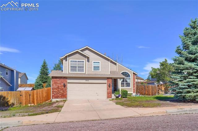 7910 Manston Drive, Colorado Springs, CO 80920 (#5808499) :: 8z Real Estate