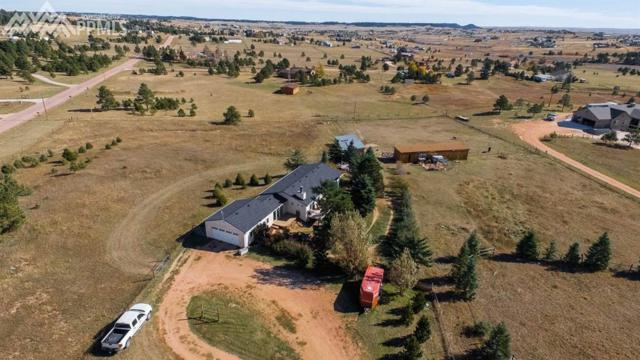15855 Softwood Road, Elbert, CO 80106 (#5809673) :: Action Team Realty