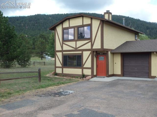 655 Forest Edge Road, Woodland Park, CO 80863 (#5816055) :: 8z Real Estate
