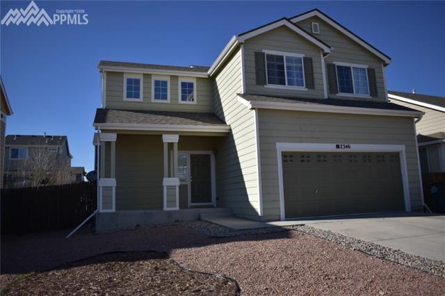 2346 Klein Place, Colorado Springs, CO 80951 (#5818922) :: The Peak Properties Group