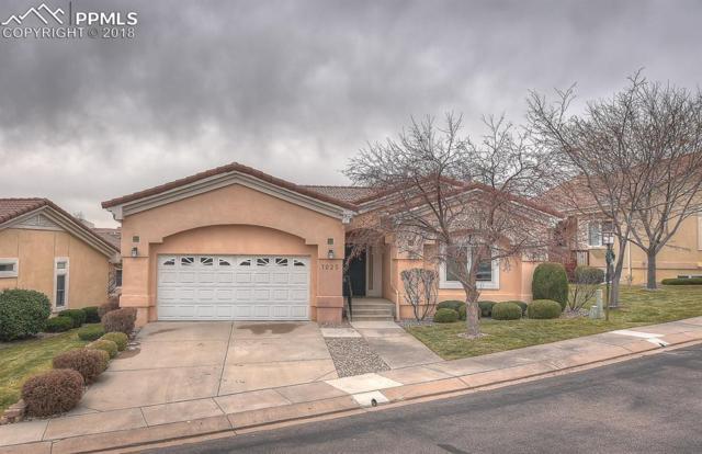1025 Serabella Grove, Colorado Springs, CO 80906 (#5819516) :: CC Signature Group