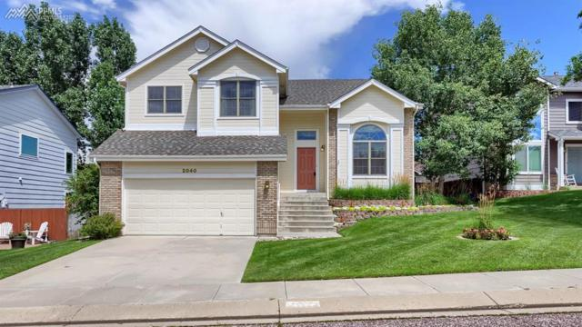 2040 Bramblwood Lane, Colorado Springs, CO 80920 (#5819637) :: The Hunstiger Team