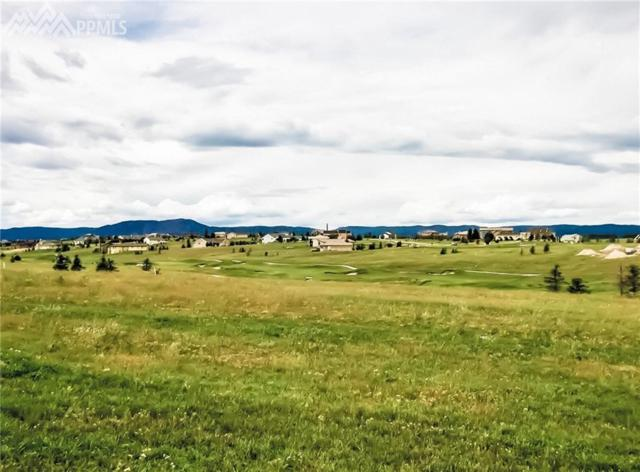 20356 Royal Troon Drive, Monument, CO 80132 (#5820363) :: 8z Real Estate