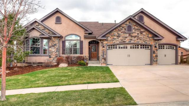 13458 Crane Canyon Loop, Colorado Springs, CO 80921 (#5821990) :: Jason Daniels & Associates at RE/MAX Millennium