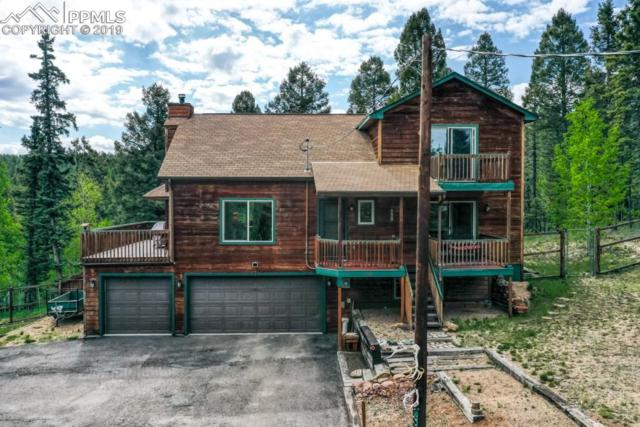 388 Spruce Lake Drive, Divide, CO 80814 (#5825632) :: The Peak Properties Group