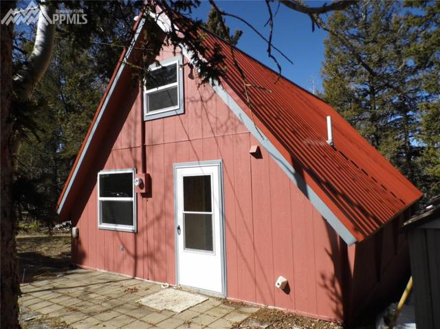 909 Fairview Drive, Cripple Creek, CO 80813 (#5829678) :: 8z Real Estate