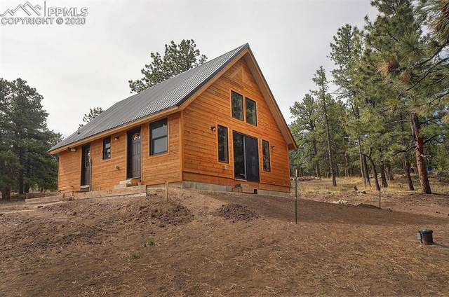 846 Crow Road, Westcliffe, CO 81252 (#5829906) :: The Kibler Group