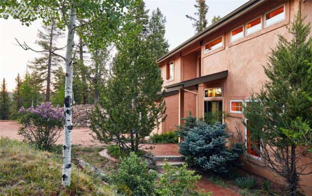 123 Homestead Drive, Woodland Park, CO 80863 (#5832919) :: Harling Real Estate