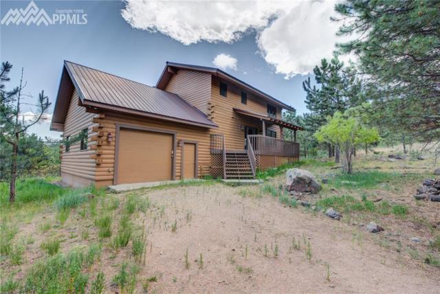 1042 County 112, Florissant, CO 80816 (#5836152) :: The Peak Properties Group