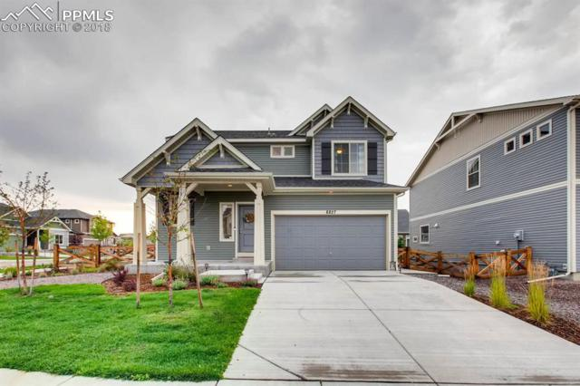 8827 Briar Brush Lane, Colorado Springs, CO 80927 (#5840066) :: Jason Daniels & Associates at RE/MAX Millennium