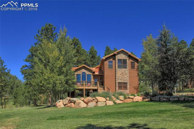 325 Morning Sun Drive, Woodland Park, CO 80863 (#5842736) :: The Peak Properties Group