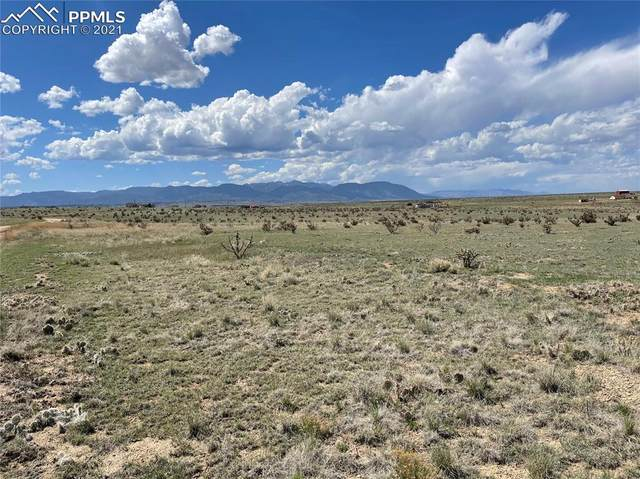 6750 Straight Arrow Point, Fountain, CO 80817 (#5843553) :: Tommy Daly Home Team