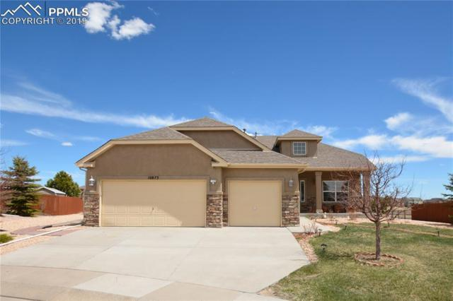 10873 White Sands Court, Peyton, CO 80831 (#5845052) :: CC Signature Group