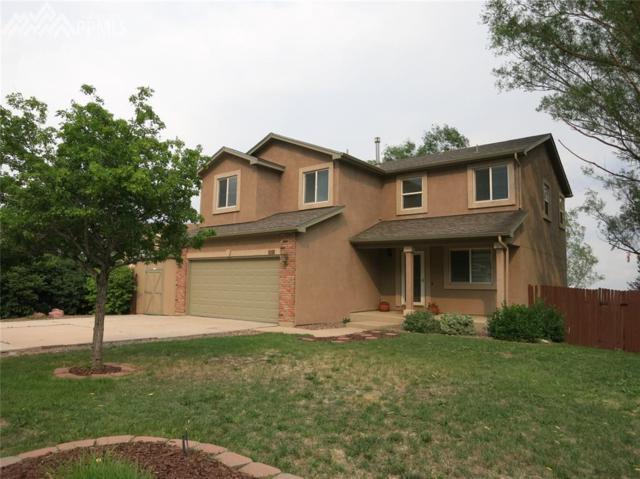 447 Pickaxe Terrace, Colorado Springs, CO 80905 (#5845471) :: The Treasure Davis Team
