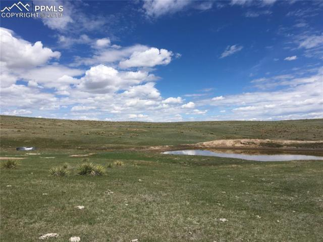 Lot 1 County 90 Road, Simla, CO 80835 (#5845803) :: Action Team Realty