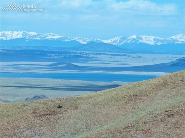 TBD County 118 Road, Hartsel, CO 80449 (#5847159) :: 8z Real Estate