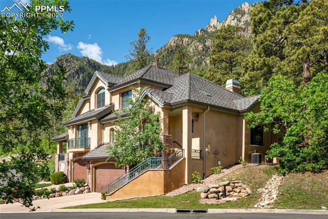 4510 Governors Point, Colorado Springs, CO 80906 (#5847358) :: The Daniels Team