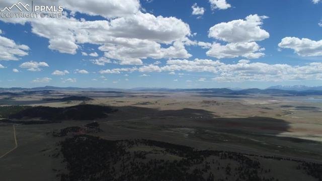 County 335 Road, Hartsel, CO 80449 (#5852757) :: 8z Real Estate