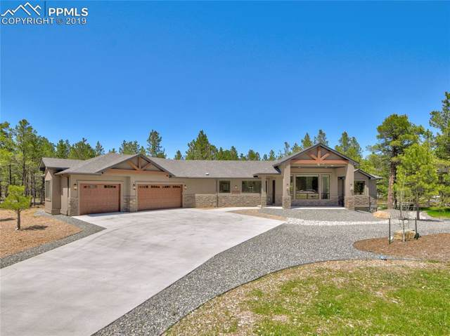 11730 Bison Meadows Court, Colorado Springs, CO 80908 (#5853450) :: Tommy Daly Home Team