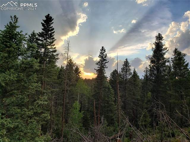 124 Kathleen Way, Florissant, CO 80816 (#5853518) :: Re/Max Structure