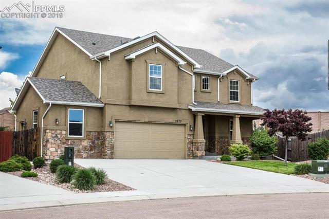 3677 Reindeer Circle, Colorado Springs, CO 80922 (#5861906) :: The Daniels Team