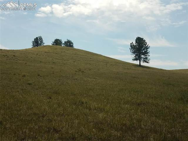 TBD County Road 403, Florissant, CO 80816 (#5862036) :: The Treasure Davis Team | eXp Realty