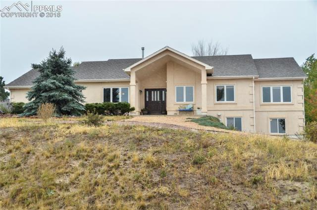 18235 White Fawn Drive, Monument, CO 80132 (#5862132) :: Action Team Realty
