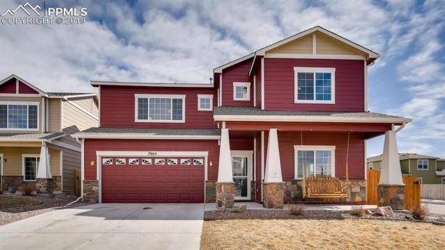 7905 Wagonwood Place, Colorado Springs, CO 80908 (#5865795) :: Fisk Team, RE/MAX Properties, Inc.