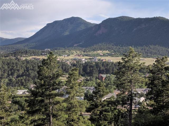 138 N Star View Circle, Palmer Lake, CO 80133 (#5869205) :: Group 46:10 Colorado Springs