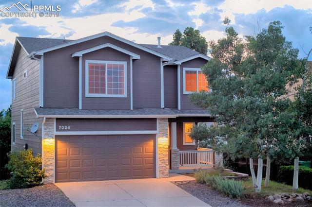 7024 Prairie Wind Drive, Colorado Springs, CO 80923 (#5869383) :: Tommy Daly Home Team