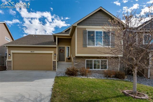 4623 Whirling Oak Way, Colorado Springs, CO 80911 (#5872089) :: The Kibler Group