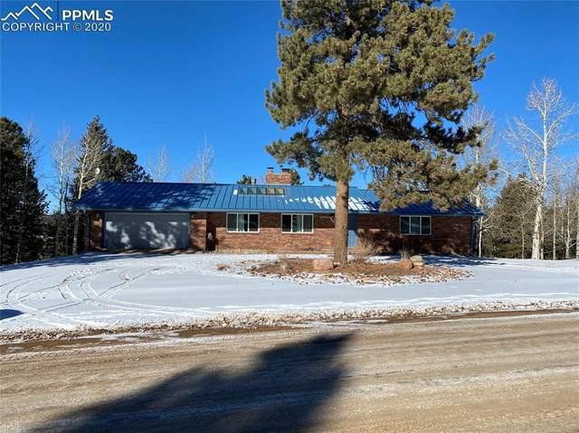 175 Piney Point Lane, Woodland Park, CO 80863 (#5872862) :: Venterra Real Estate LLC
