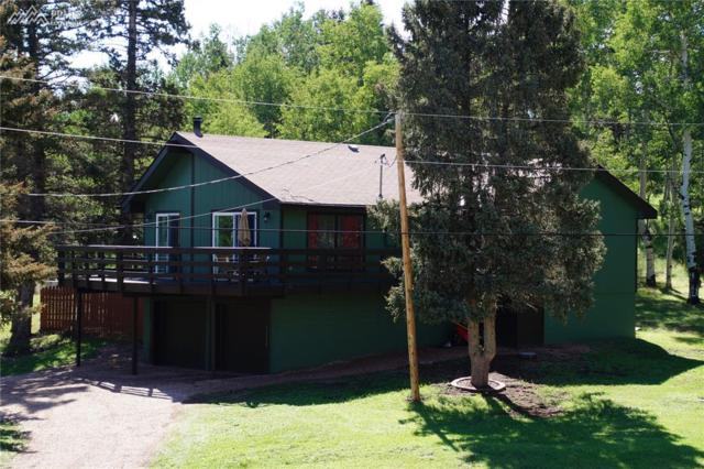 555 Elfin Glen Drive, Divide, CO 80814 (#5873419) :: 8z Real Estate