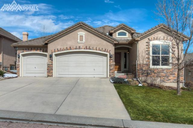 13835 Firefall Court, Colorado Springs, CO 80921 (#5874533) :: RE/MAX Advantage