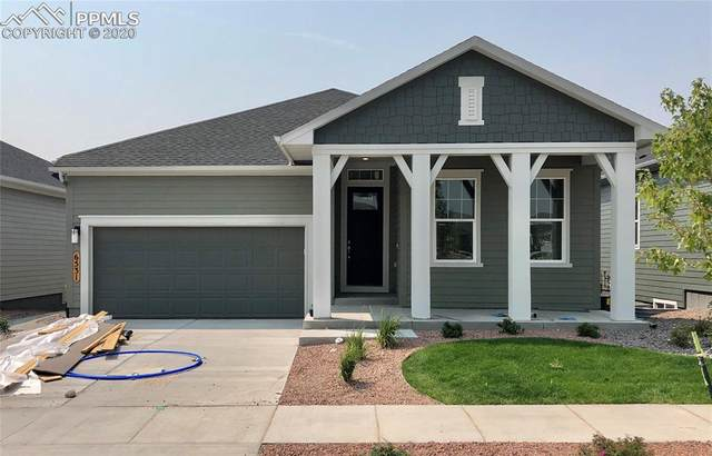 6531 Twin Falls Court, Colorado Springs, CO 80924 (#5877721) :: Action Team Realty