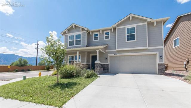 4014 Silver Star Grove, Colorado Springs, CO 80911 (#5880387) :: 8z Real Estate