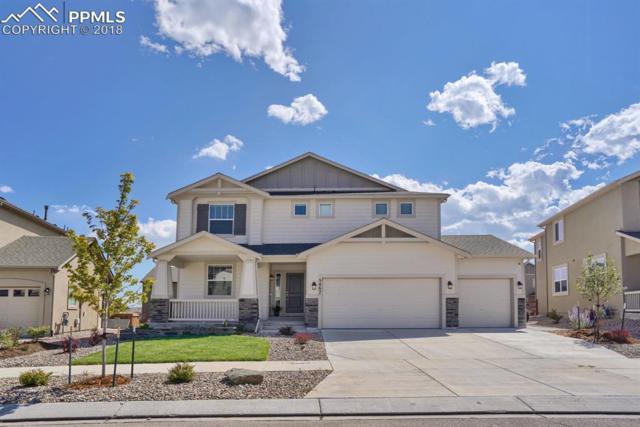 5467 Paddington Creek Place, Colorado Springs, CO 80924 (#5882230) :: Action Team Realty