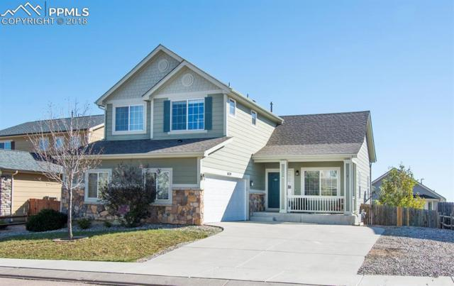 8379 Arbor Green Drive, Fountain, CO 80817 (#5886024) :: Venterra Real Estate LLC