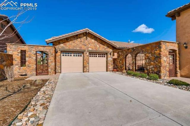 13135 Thumbprint Court, Colorado Springs, CO 80921 (#5892710) :: Tommy Daly Home Team
