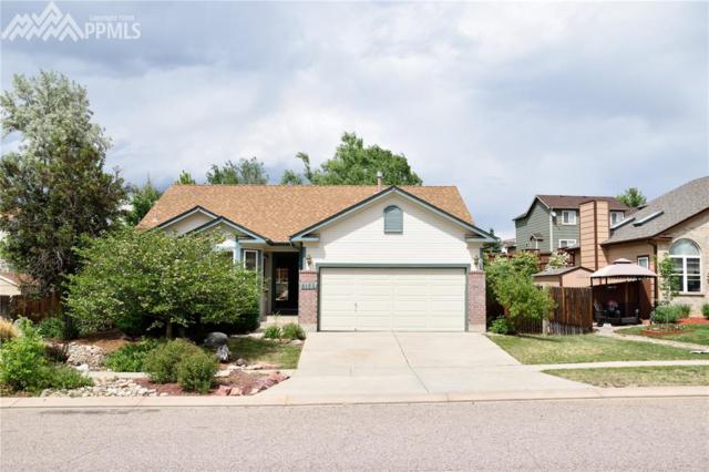 8155 Radcliff Drive, Colorado Springs, CO 80920 (#5894686) :: Fisk Team, RE/MAX Properties, Inc.