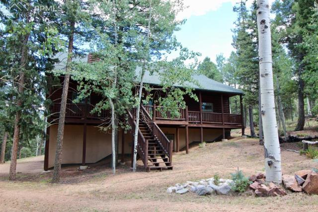 36 Cradle Lake Place, Divide, CO 80814 (#5896210) :: Jason Daniels & Associates at RE/MAX Millennium