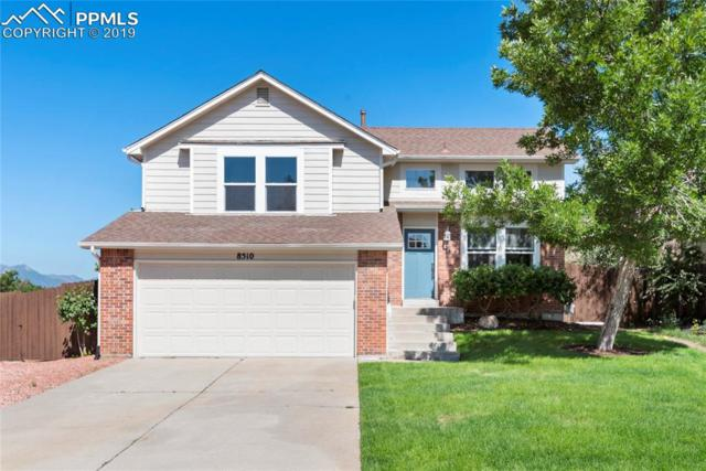 8510 Salsifa Terrace, Colorado Springs, CO 80920 (#5896963) :: 8z Real Estate