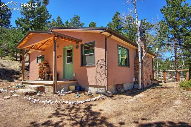 6230 Waterfall Loop, Manitou Springs, CO 80829 (#5899997) :: The Treasure Davis Team | eXp Realty