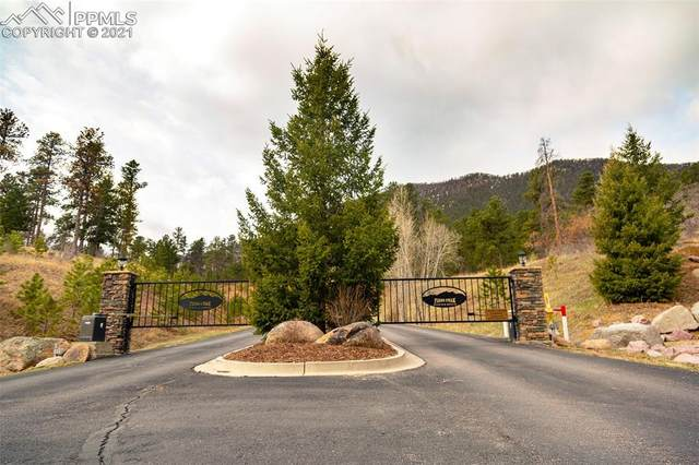5330 Chipita Pines Drive, Cascade, CO 80809 (#5900959) :: Fisk Team, RE/MAX Properties, Inc.