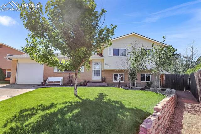 5045 Sodbuster Trail, Colorado Springs, CO 80917 (#5901372) :: Tommy Daly Home Team