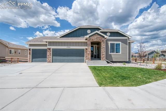 17892 Blue Opal Court, Monument, CO 80132 (#5902478) :: The Harling Team @ Homesmart Realty Group