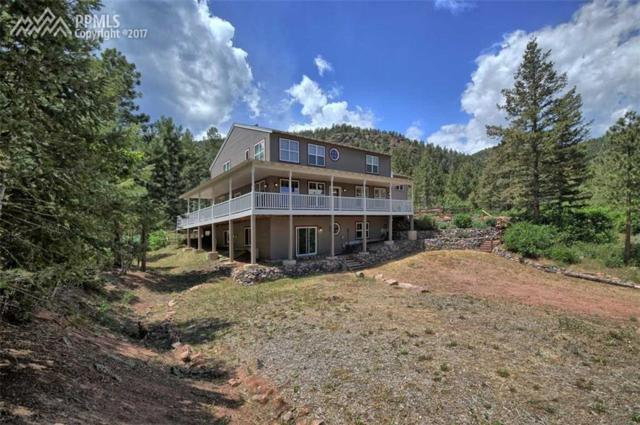 810 Sun Ridge Circle, Palmer Lake, CO 80133 (#5904803) :: 8z Real Estate