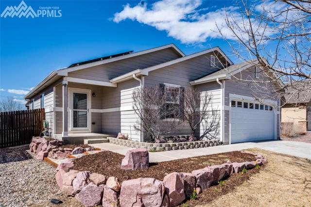 7655 Barn Owl Drive, Fountain, CO 80817 (#5915544) :: Jason Daniels & Associates at RE/MAX Millennium